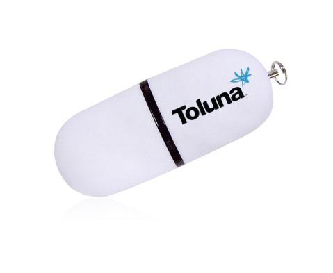 Toluna Mock Up-1